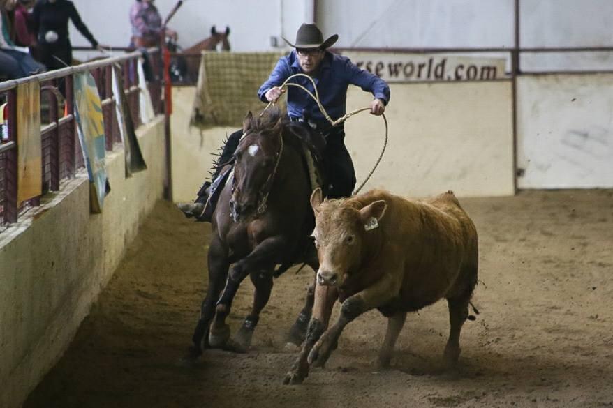 NERCHA Cowhorse Bonanza